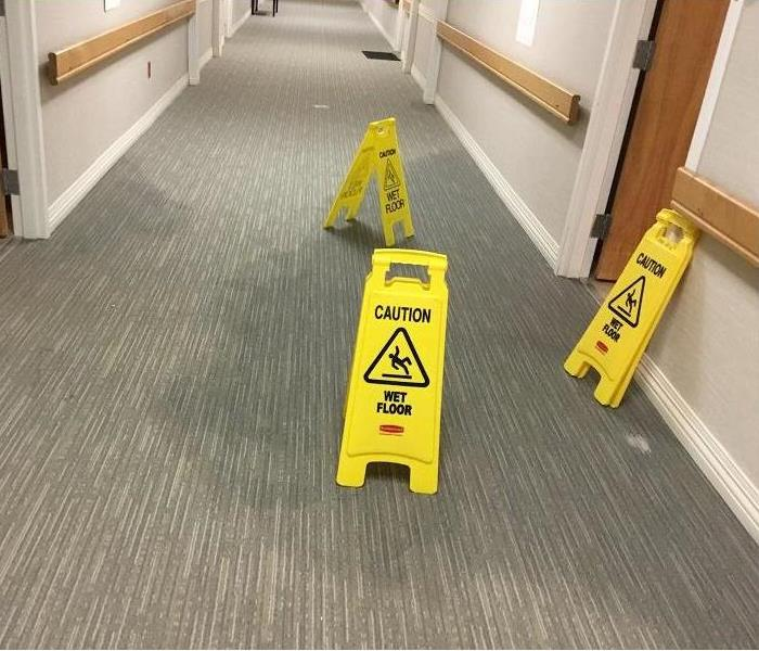 Long carpeted hallway of a commercial building with yellow caution wet floor signs set up over darker, wet areas of carpet.