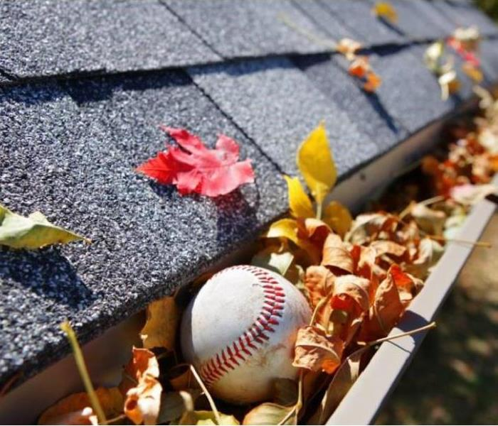 Water Damage How Often Should You Clean Your Gutters?