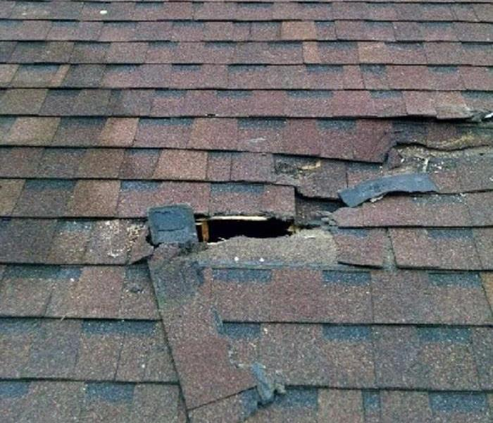 Mold Remediation Roof Damage Can Lead to Other Issues