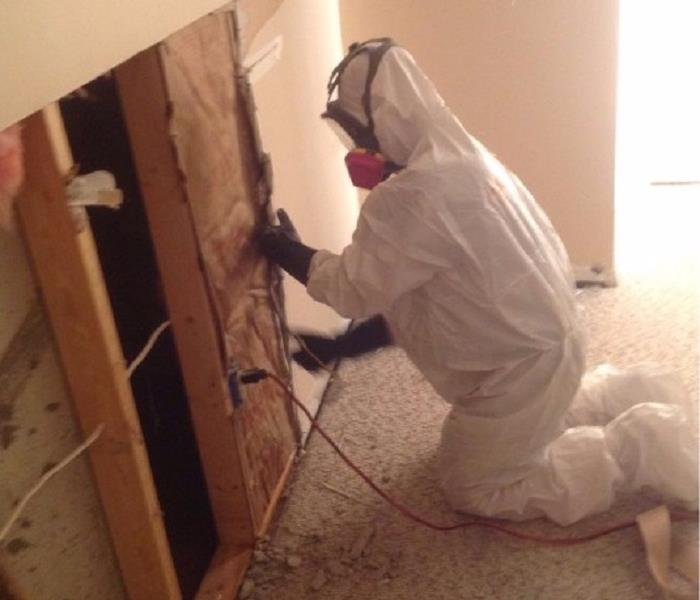 Mold Remediation The SERVPRO of Northeast Cincinnati Mold Remediation Process