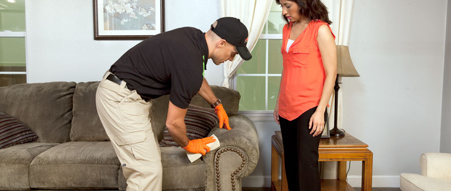 Montgomery, OH carpet upholstery cleaning